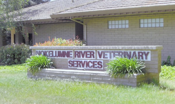Mokelumne River Veterinary Services - Veterinarian In Lockeford, CA